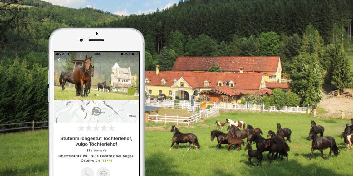 Bio Stutenmilch Töchterlehof Steiermark Stutenmilchprodukte Oststeiermark Oberfeistritz Anger