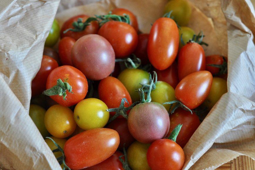 Header Tomaten Paradeiser Raritäten AbHof Bio (1)